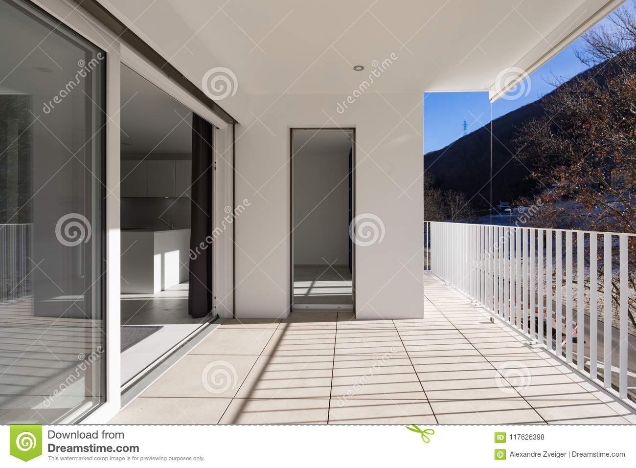 Modern house terrace with railing large plant outside the balcony blue sky frontal view