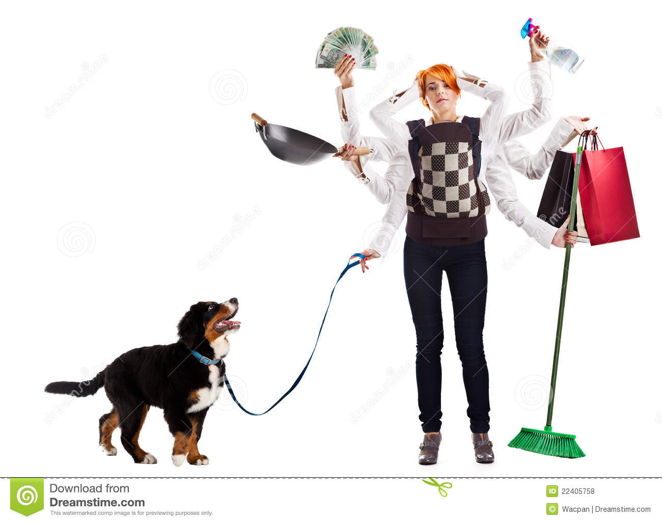 Modern housewife royalty free stock photos image 22405758 for Modern housewife