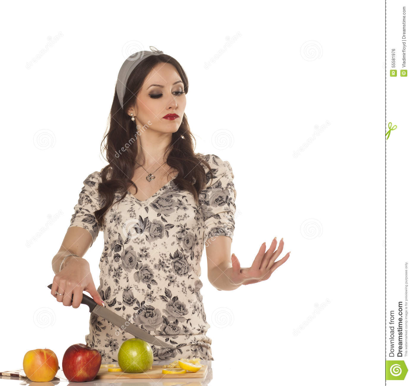 modern housewife stock photo image 55581976