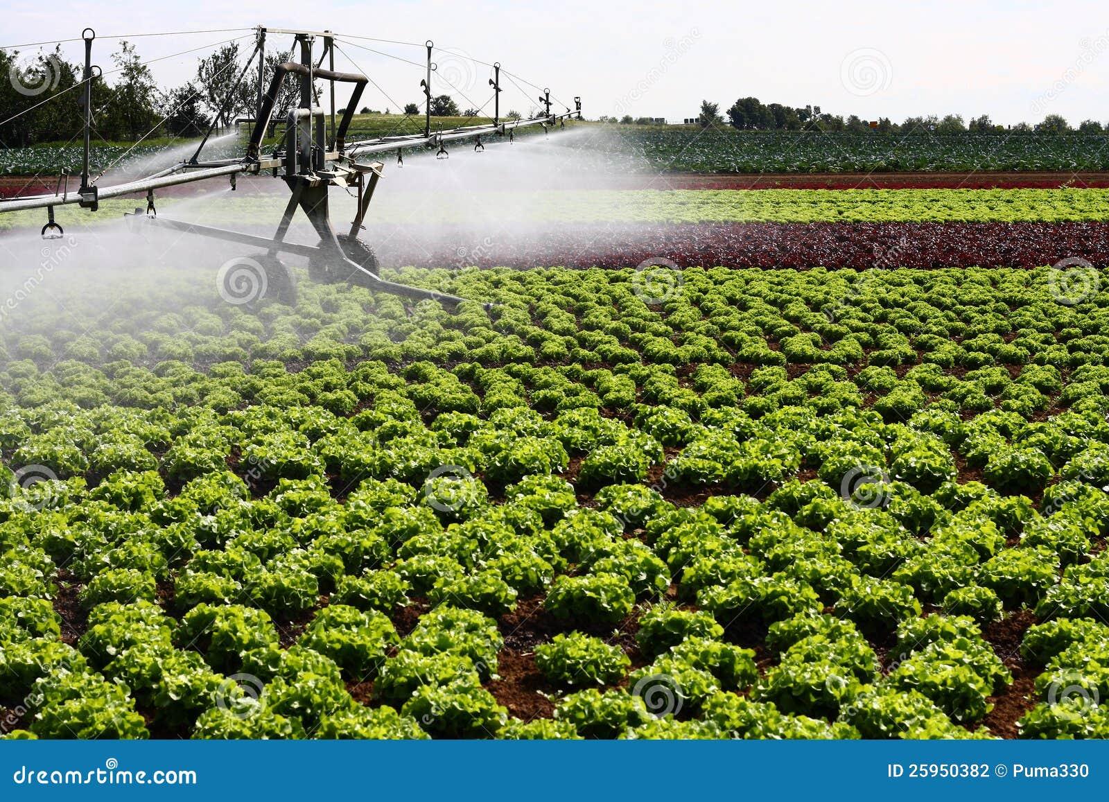Modern Irrigation System Stock Photography - Image: 25950382