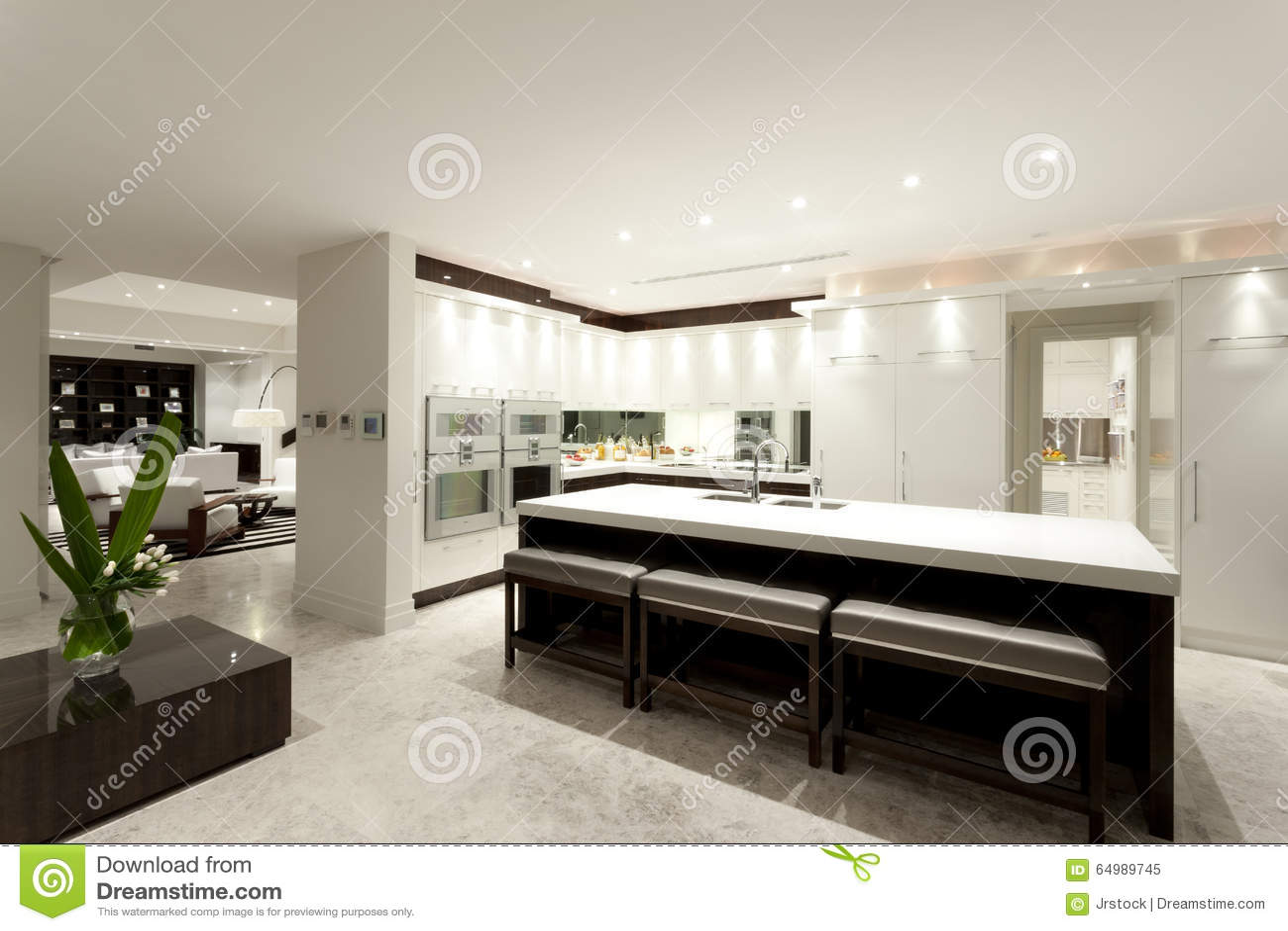 Modern kitchen with a big island