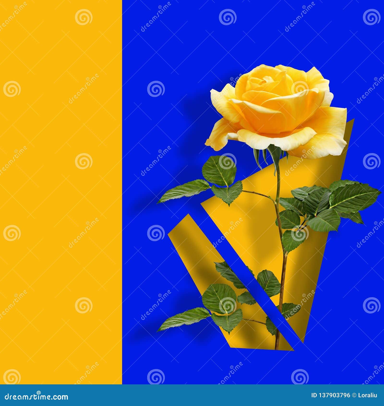 Modern modern konstaffisch med den gula rosen på blå abstrakt bakgrund