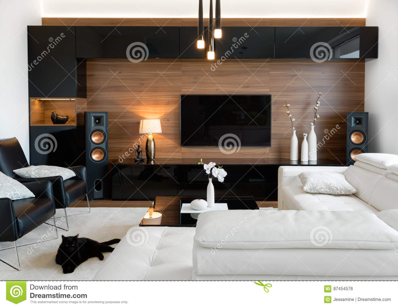Modern living room with stereo speakers stock photo image of high modern 87454576 - Living room realty ...