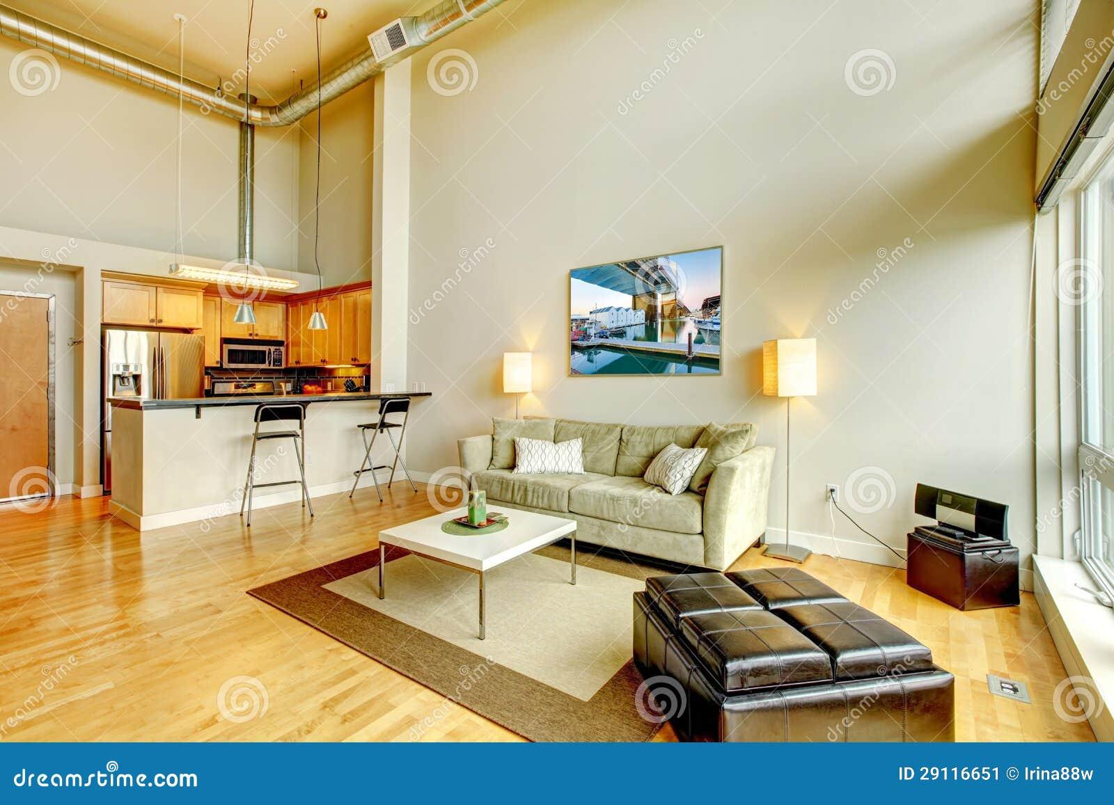 Modern Loft Apartment Living Room Interior With Kitchen