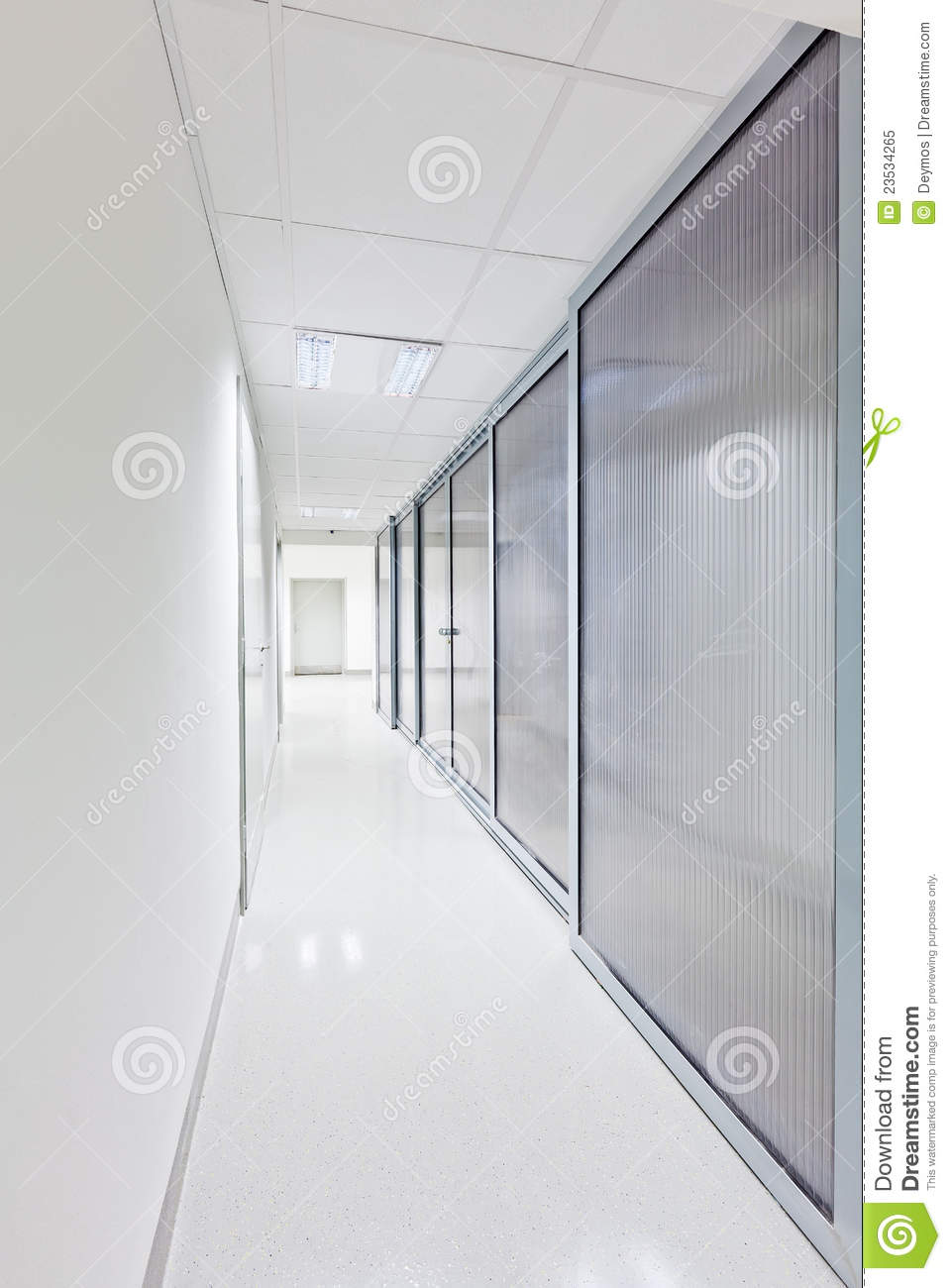 Modern Long Corridor With Glass Doors Royalty Free Stock