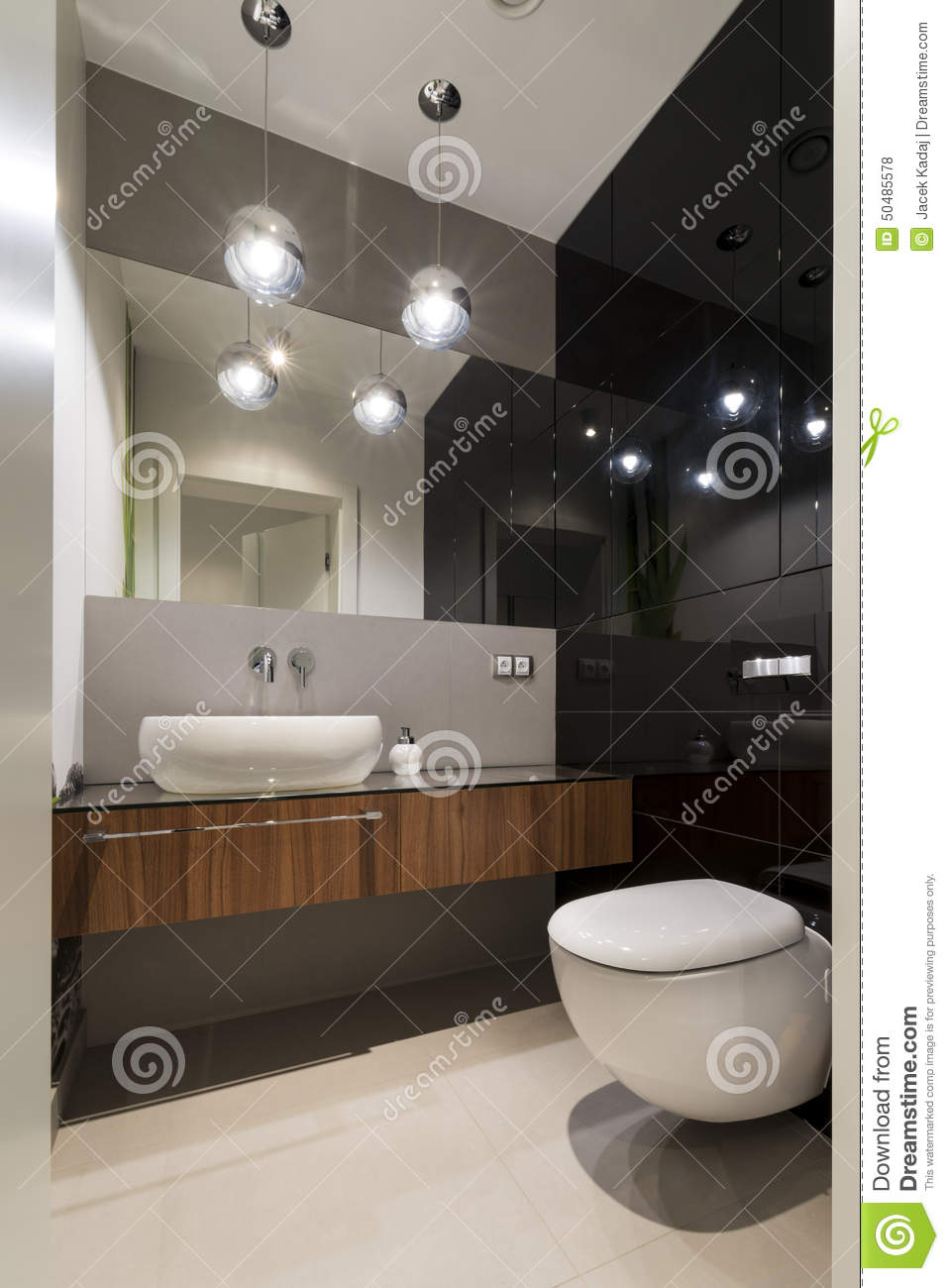 Modern Luxury Toilet Room Stock Photo Image 50485578