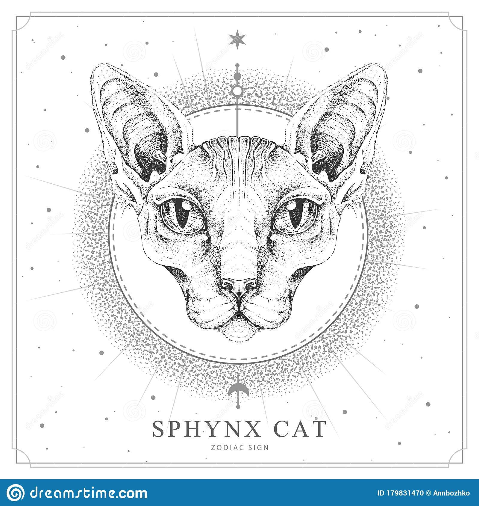 modern magic witchcraft card with sphynx cat realistic