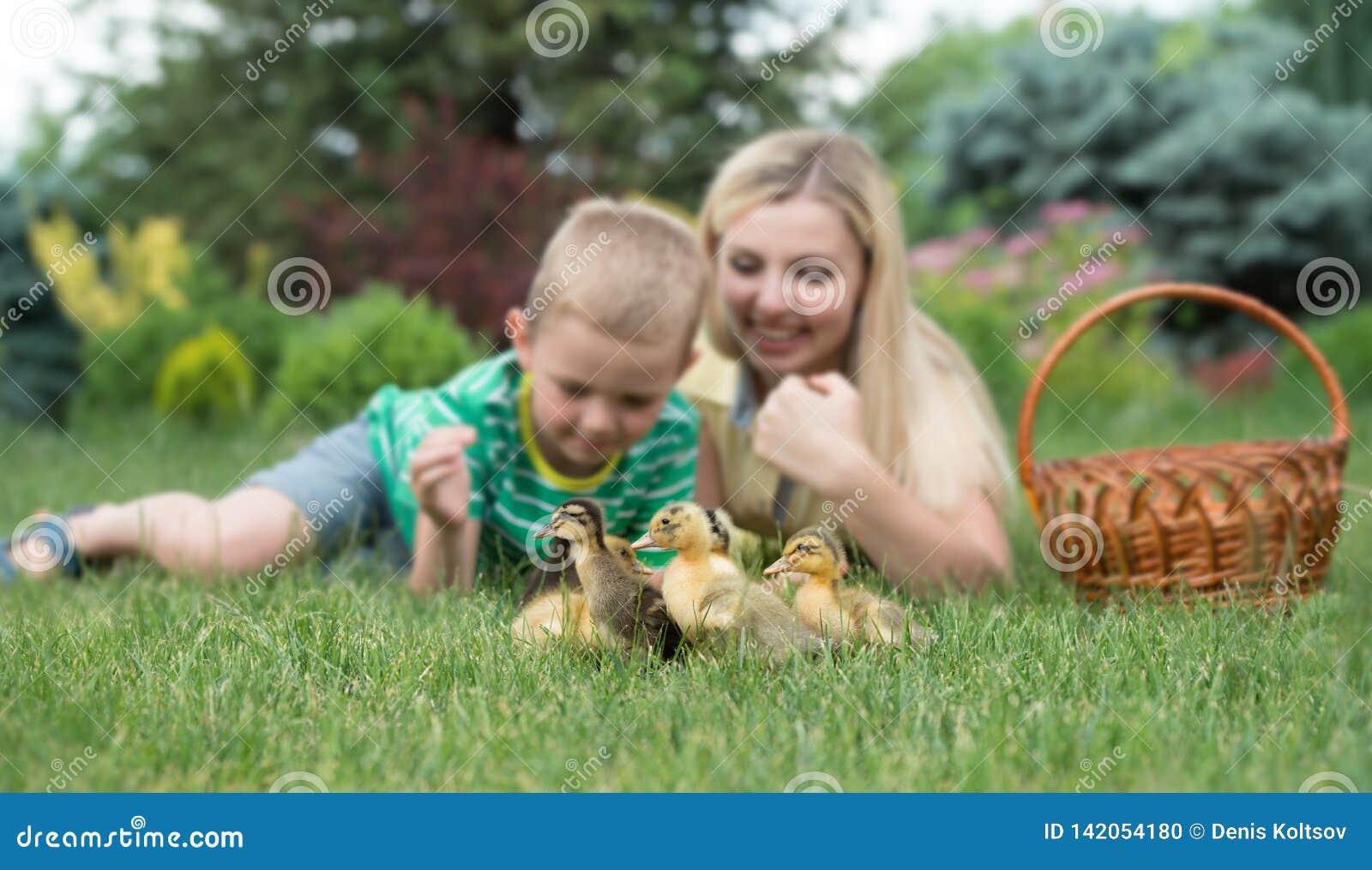 Modern och sonen som ligger på gräs och ser som anden, går lite