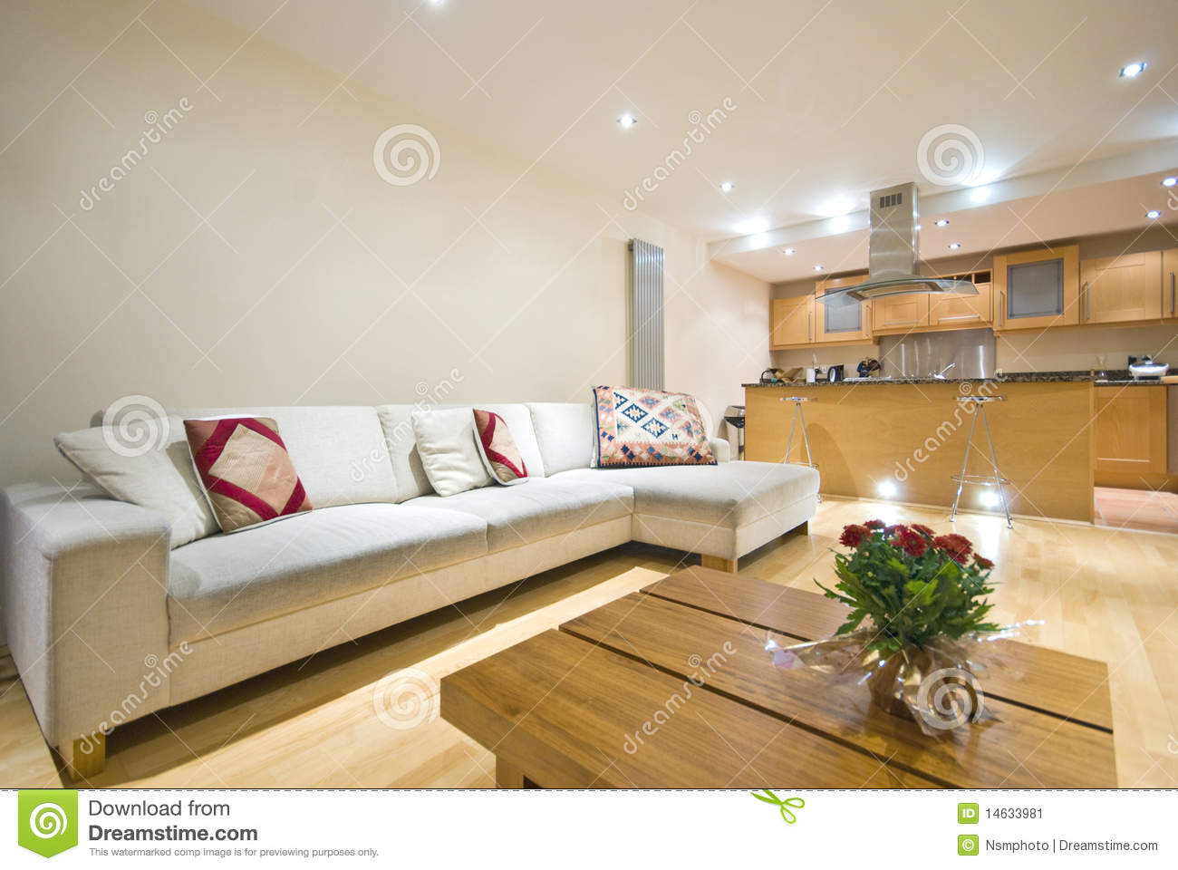 Modern Open Plan Living Room And Kitchen Stock Image