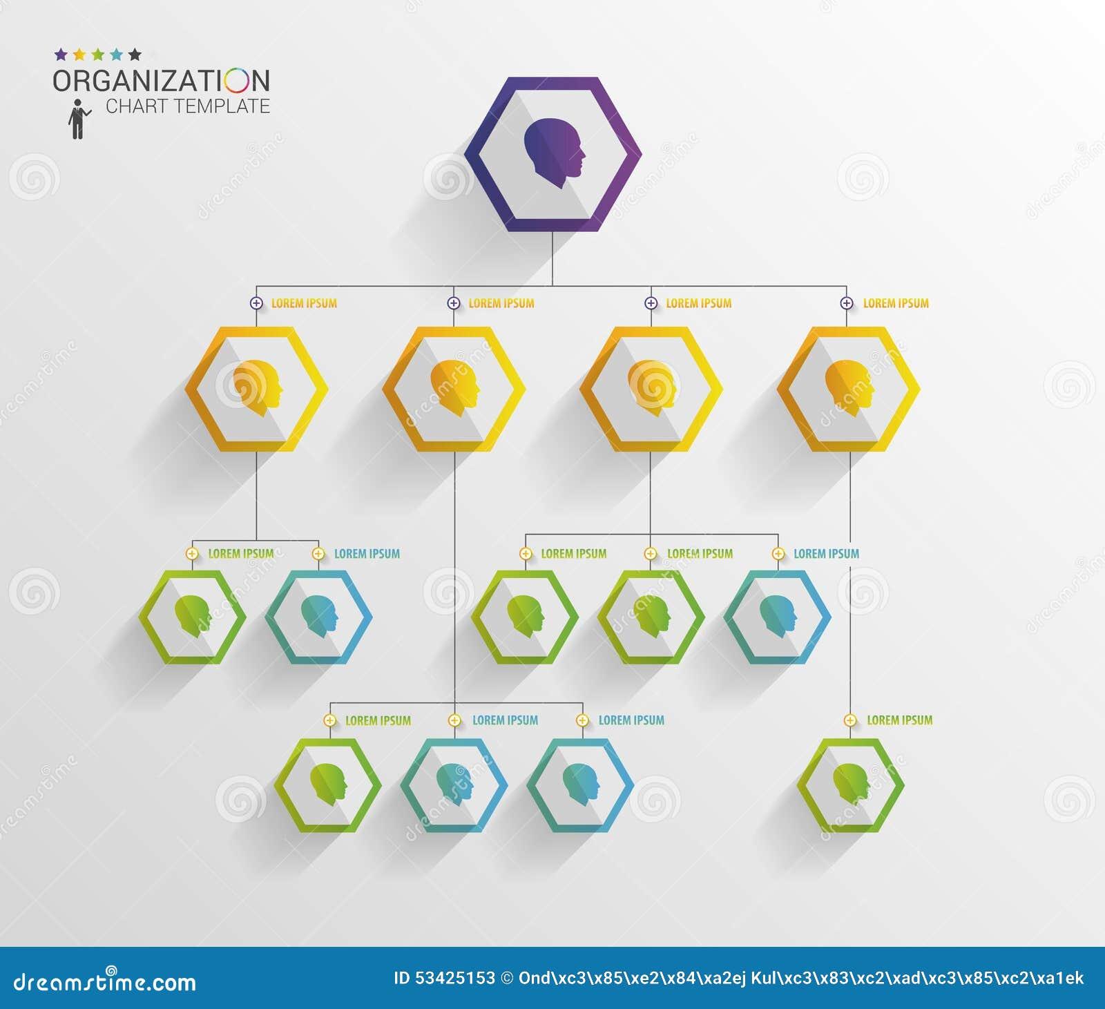 modern organization chart template vector stock vector illustration 53425153. Black Bedroom Furniture Sets. Home Design Ideas