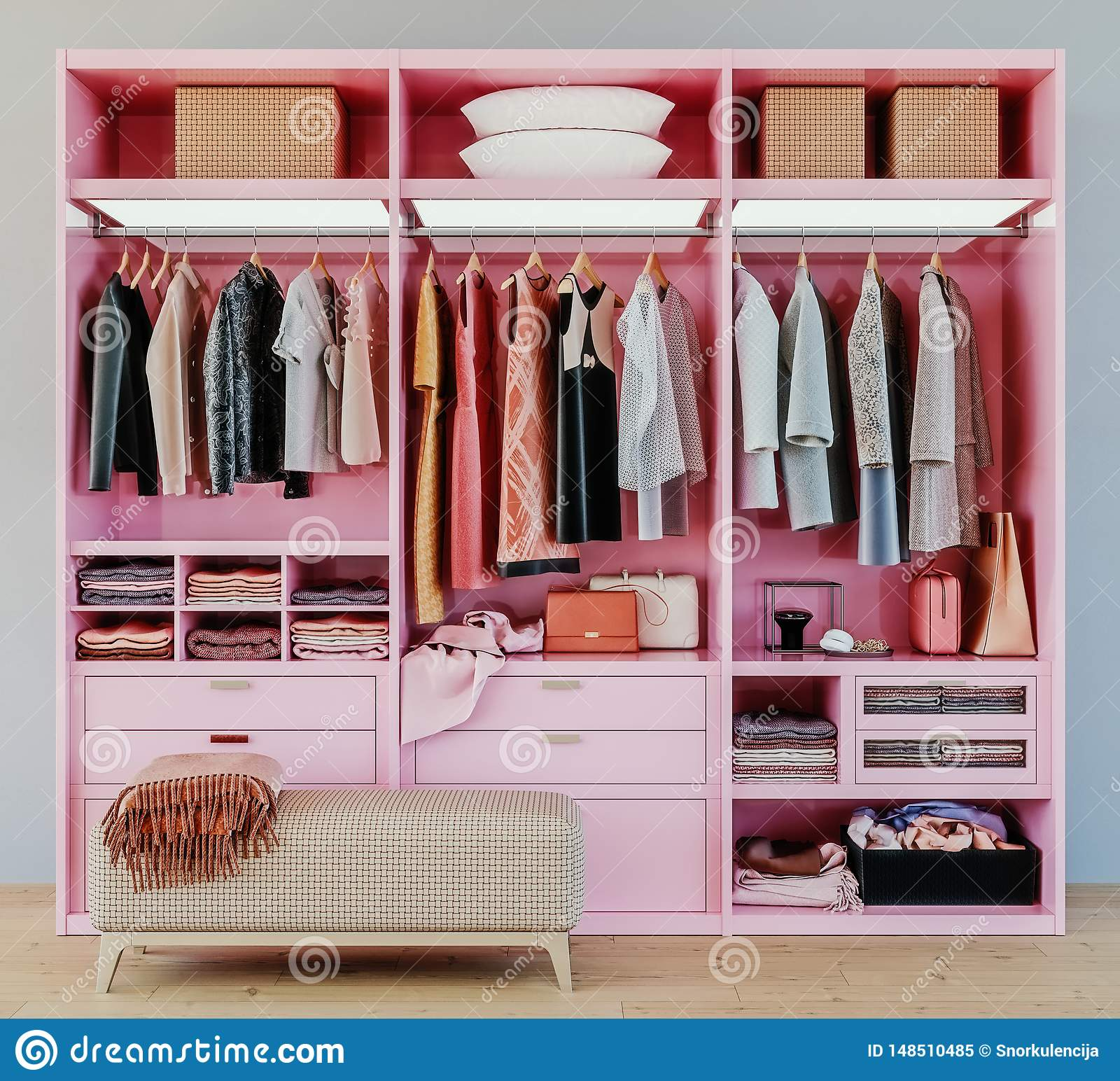 Modern Pink Wardrobe With Clothes Hanging On Rail In Walk ...
