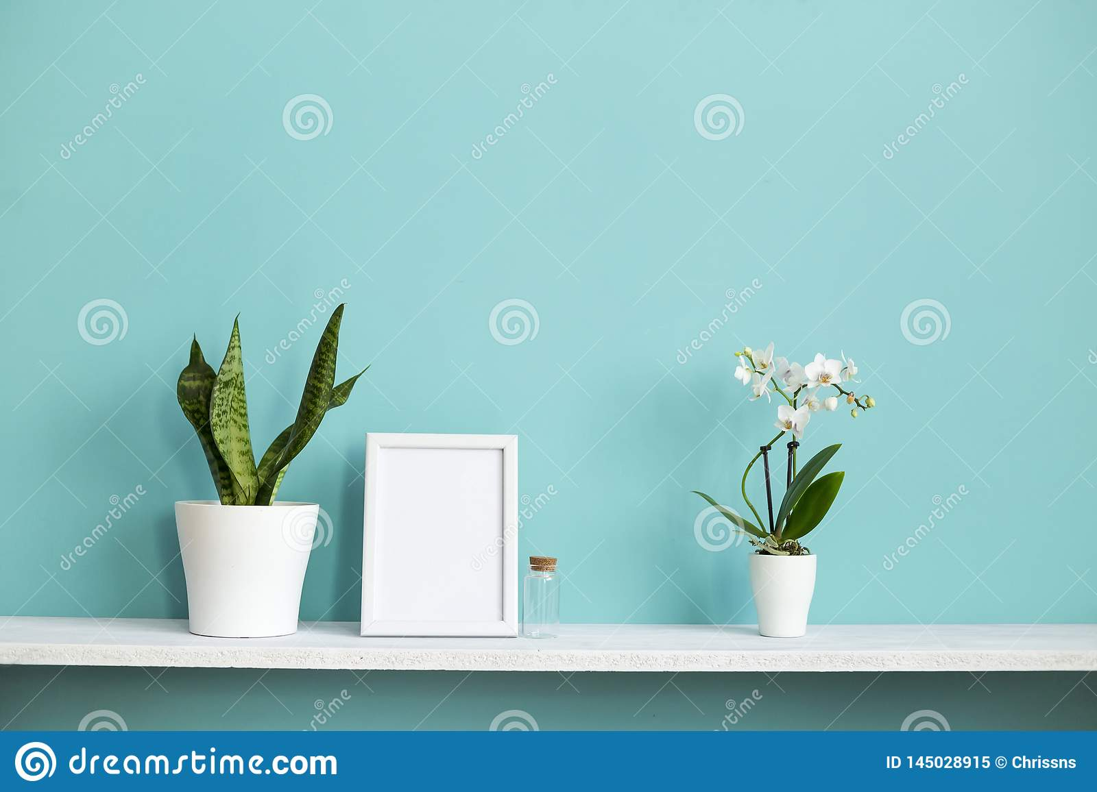 Picture frame mockup. White shelf against pastel turquoise wall with potted orchid and snake plant