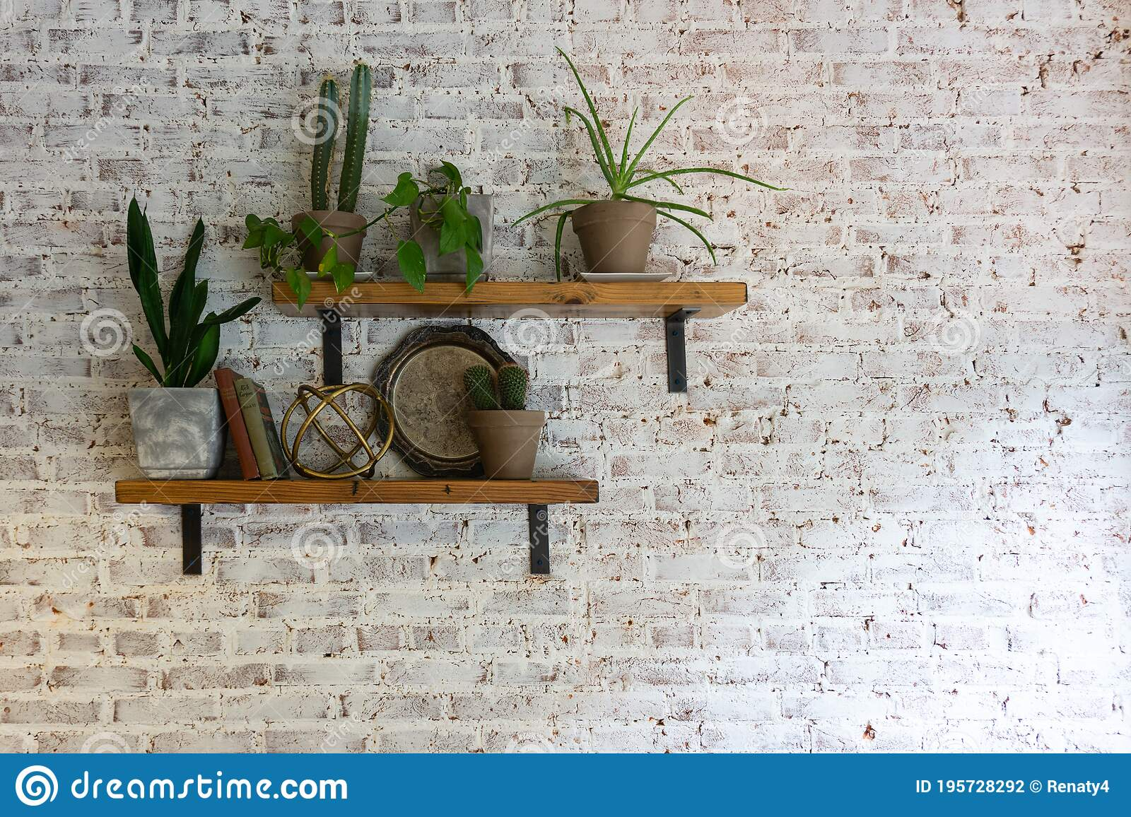 Modern Stylish White Brick Wall With Shelves And Plants On Them Stock Photo Image Of Brick Copy 195728292