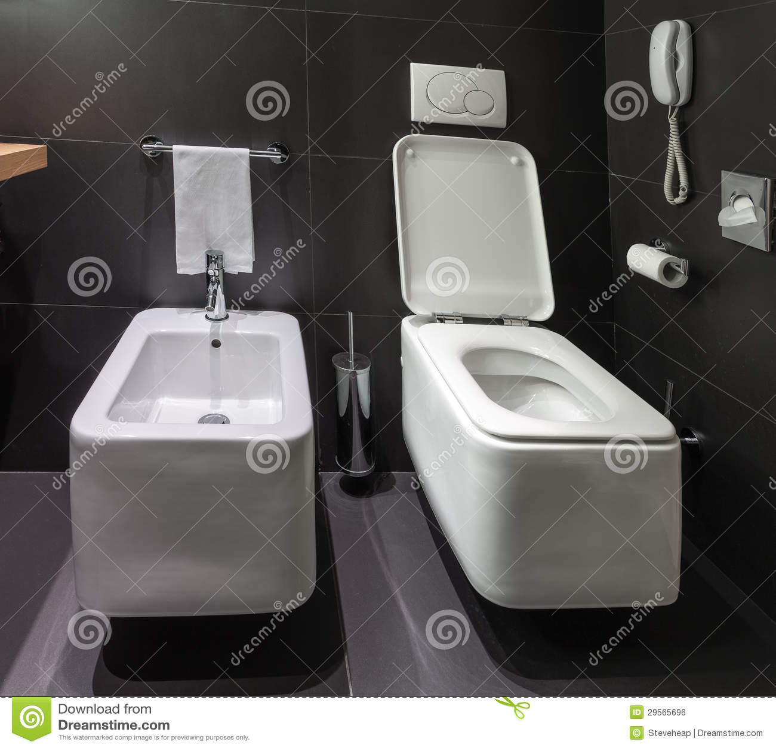 Modern toalett och bidé i badrum royaltyfri bild   bild: 29565696
