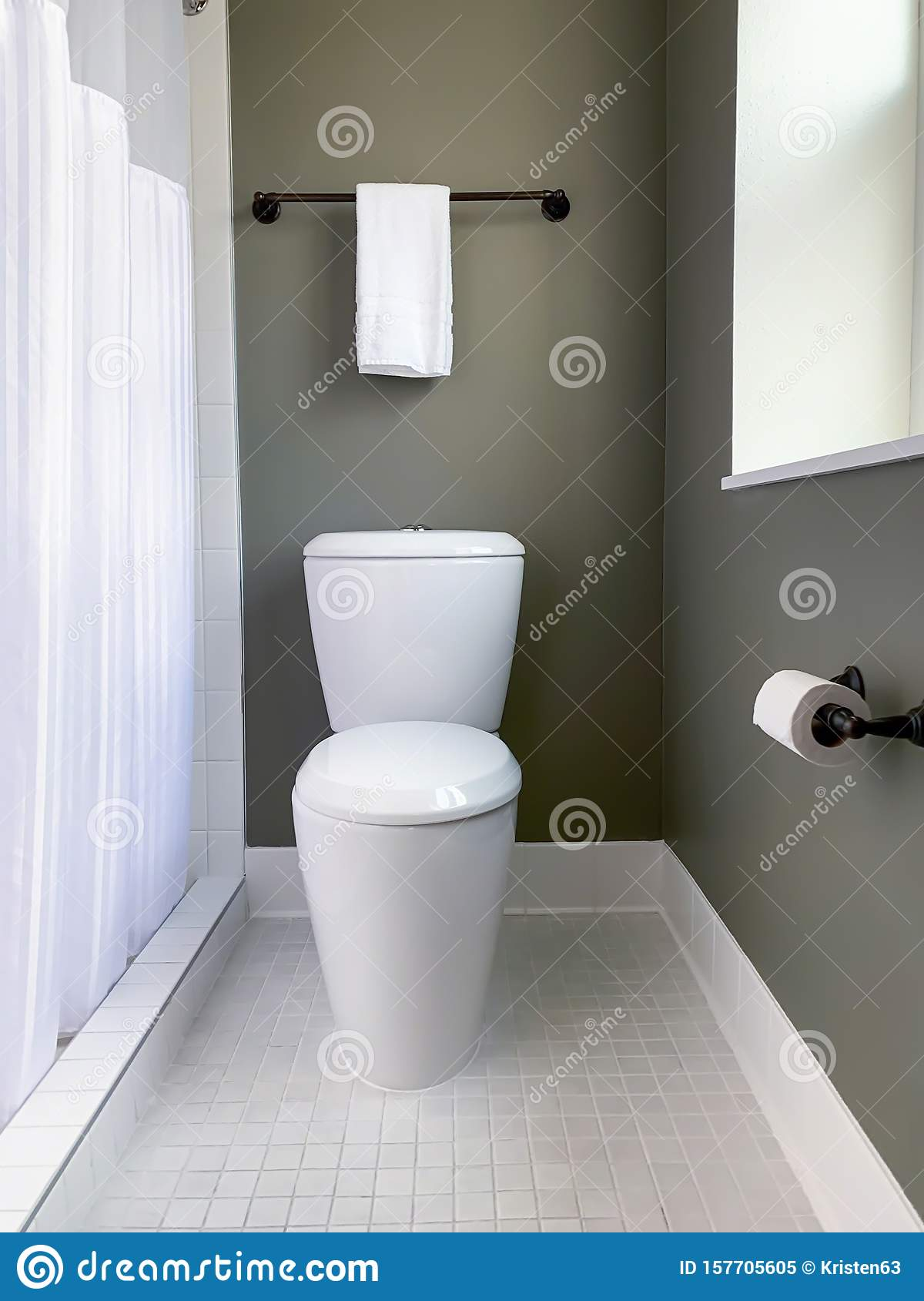 Modern Toilet Design In Stylish Gray And White Bathroom Stock Image Image Of Contemporary Architecture 157705605