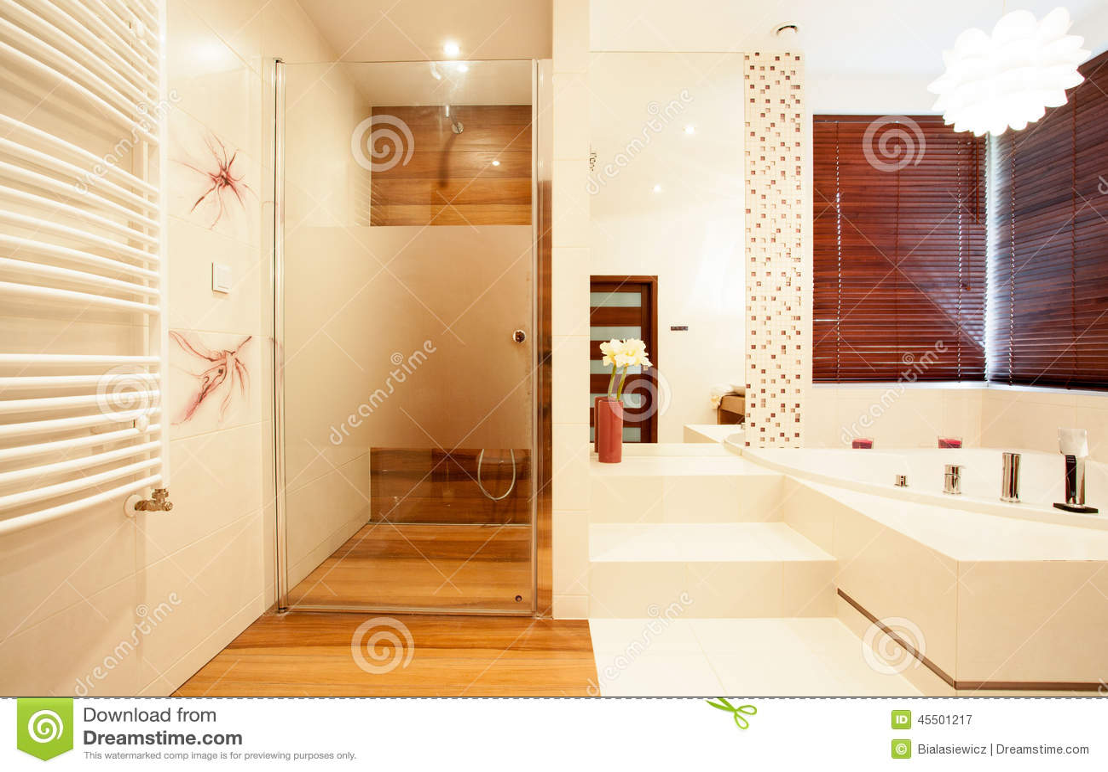Modern trädusch i badrum arkivfoto   bild: 45501217
