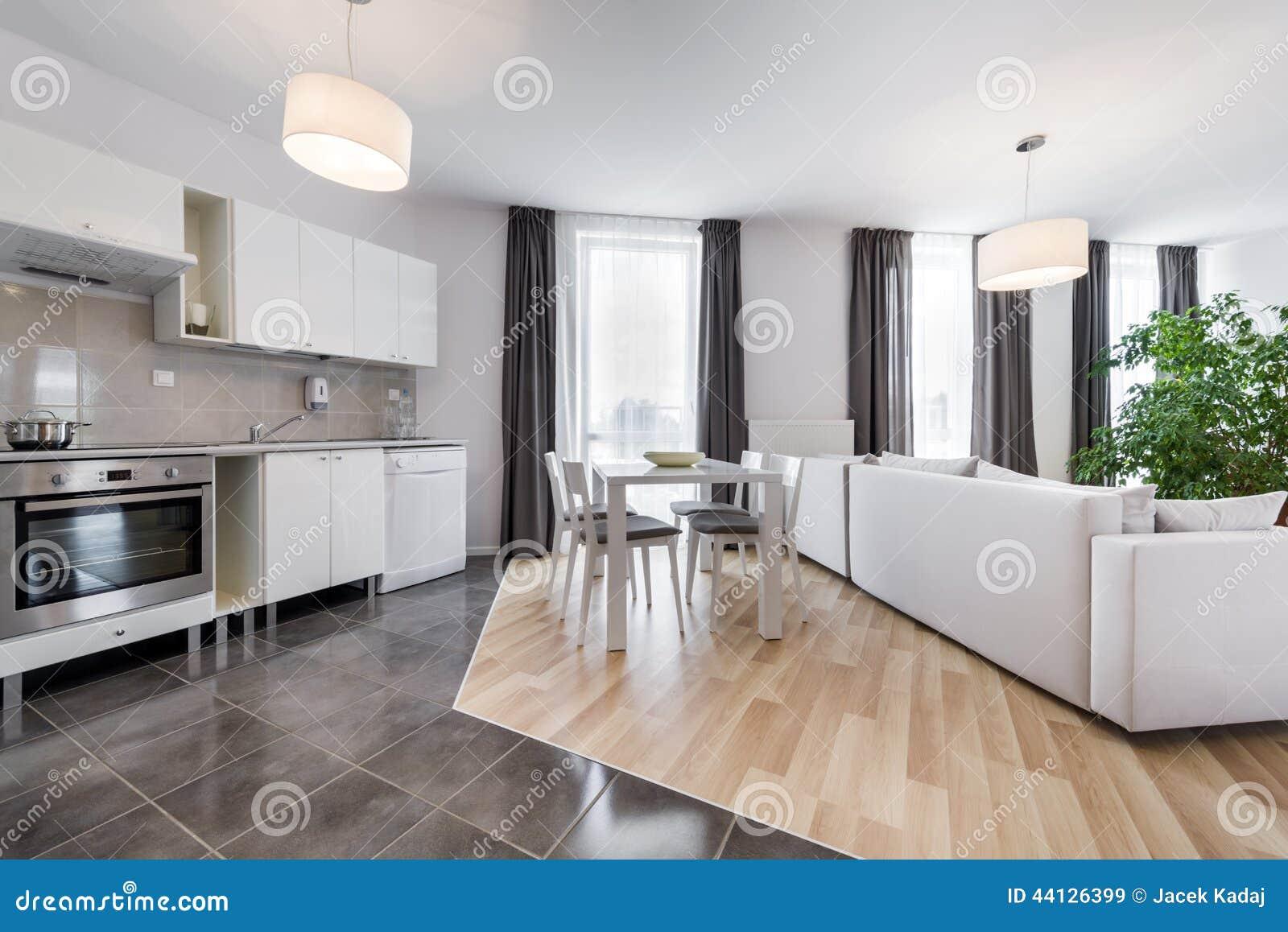 Modern vardagsrum för inredesign med kök arkivfoto   bild: 44126399