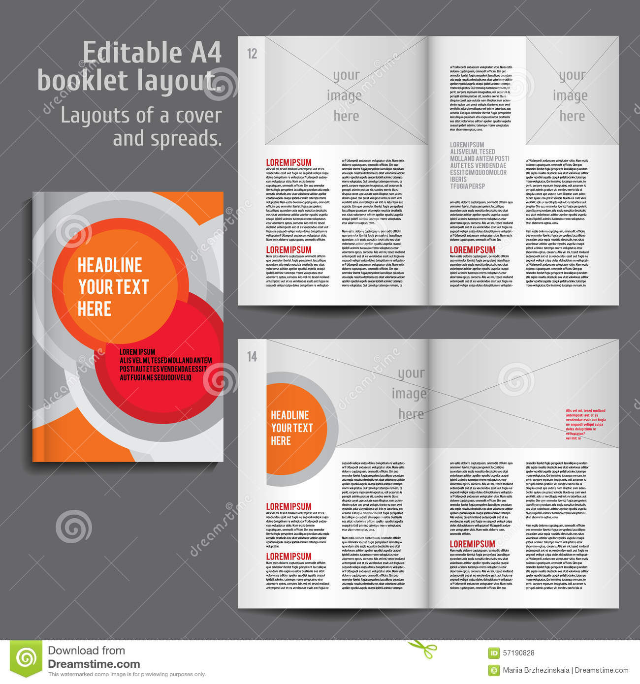 modern vector abstract brochure  report or flyer stock