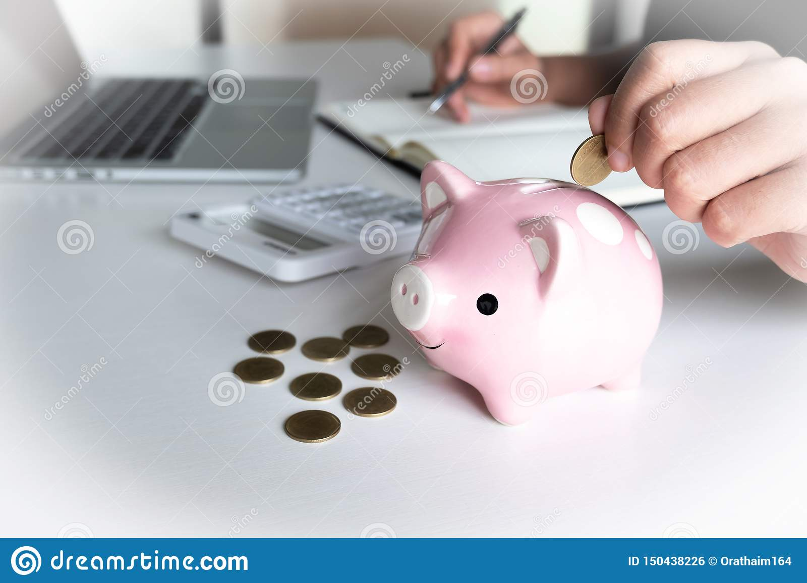 Modern woman putting Coin In pink Piggy Bank, step up growing business to success and saving for retirement concept