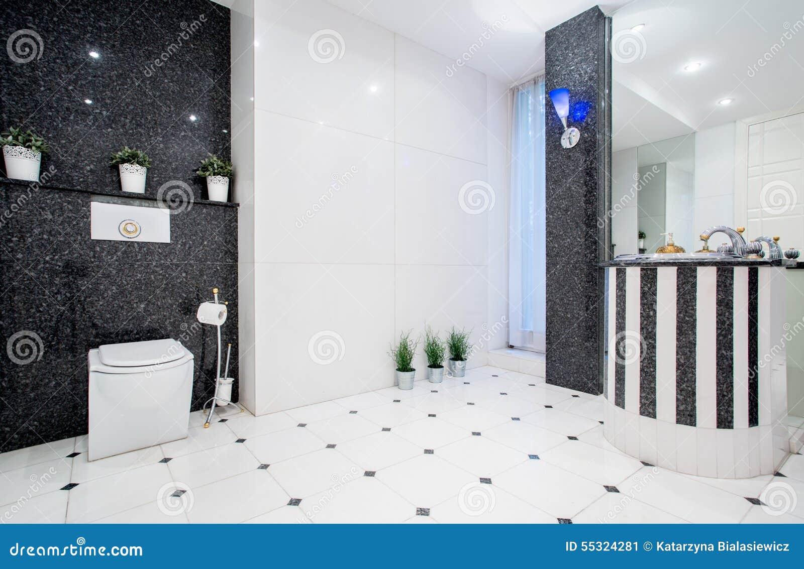 Modern zwart wit toilet stock afbeelding afbeelding bestaande uit
