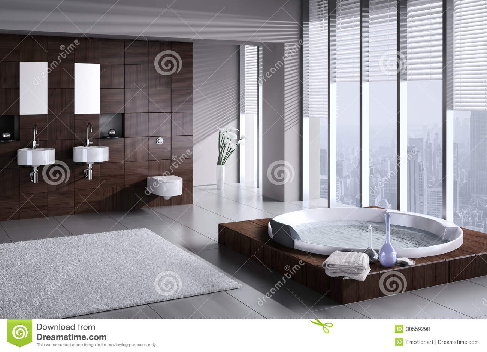 Moderne badkamers met dubbele bassin en jacuzzi stock illustratie afbeelding 30559298 - Badkamers ...