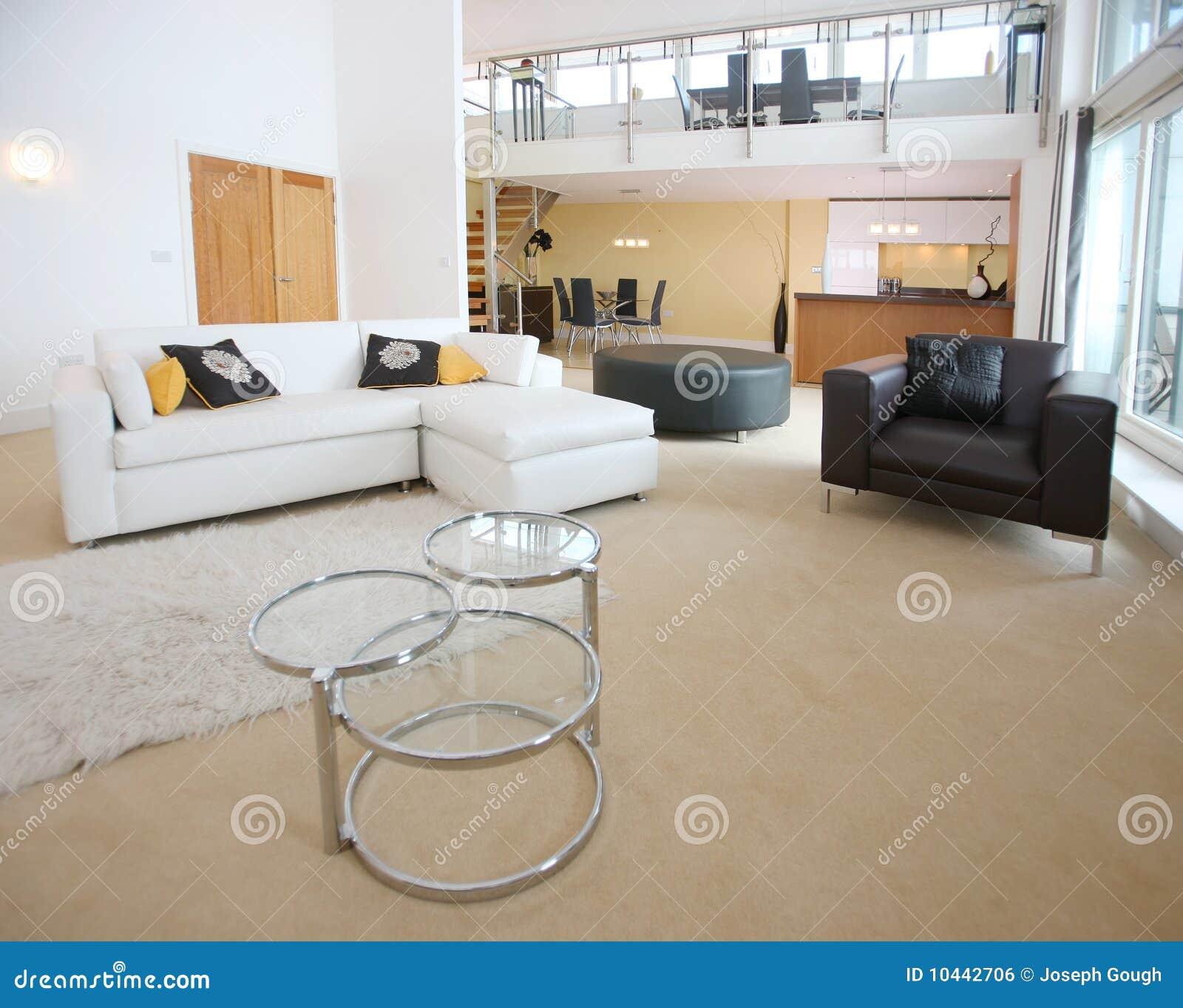 Moderne Großraumwohnung stockfoto. Bild von lagerung - 10442706