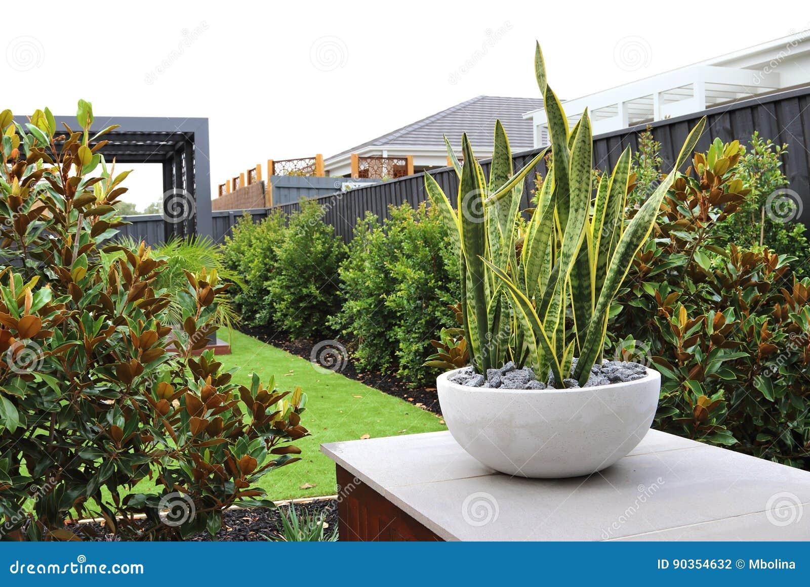 Moderne Hinterhofdesignideen Stockfoto - Bild von außen, landscaped ...