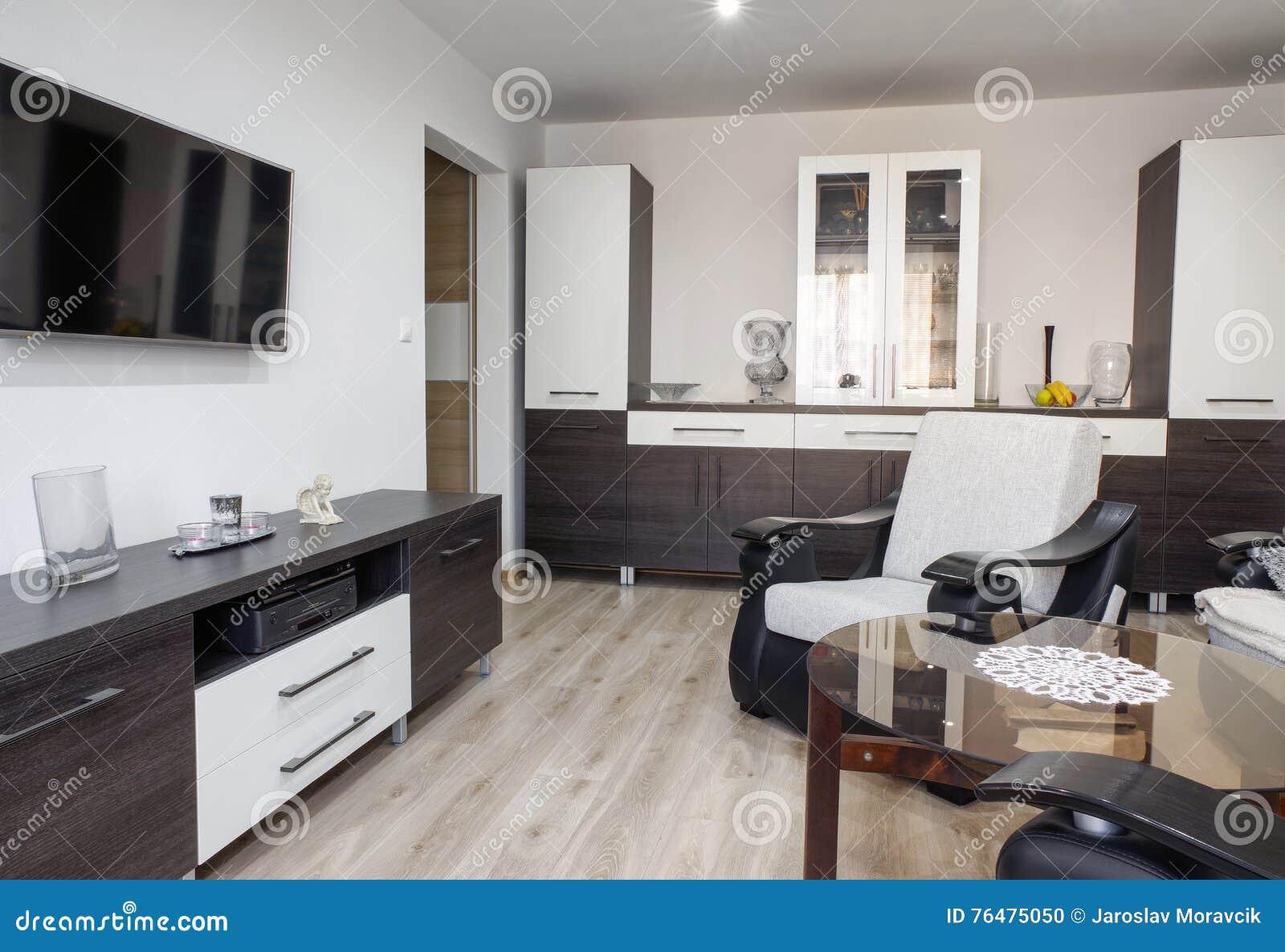 Moderne Möbel Im Wohnzimmer Stockfoto - Bild von raum, modern: 76475050