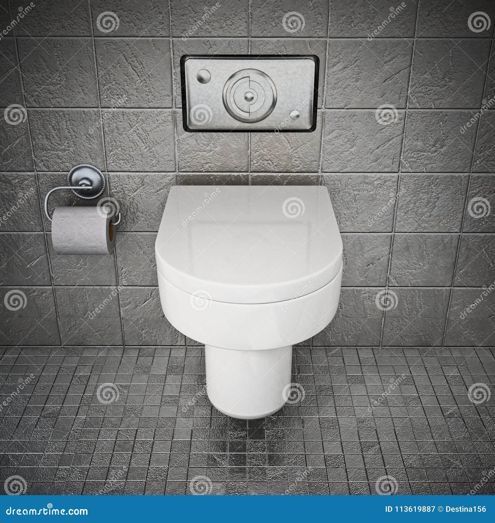 Moderne Toilette Innerhalb Der Toilette Bedeckt Mit Grauen Steinen ...