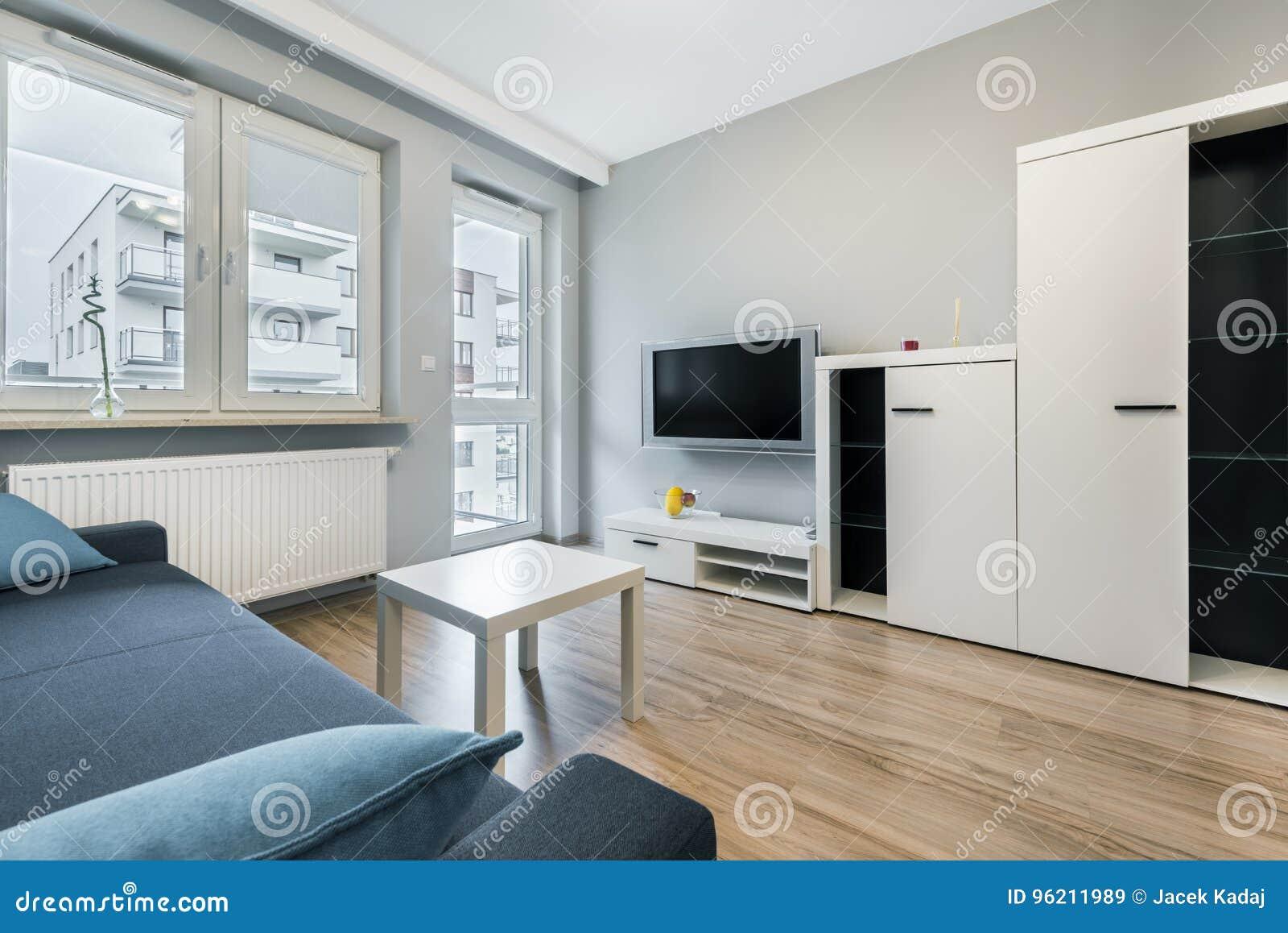 Moderne woonkamer met grijze muren stock afbeelding for Grijze woonkamer