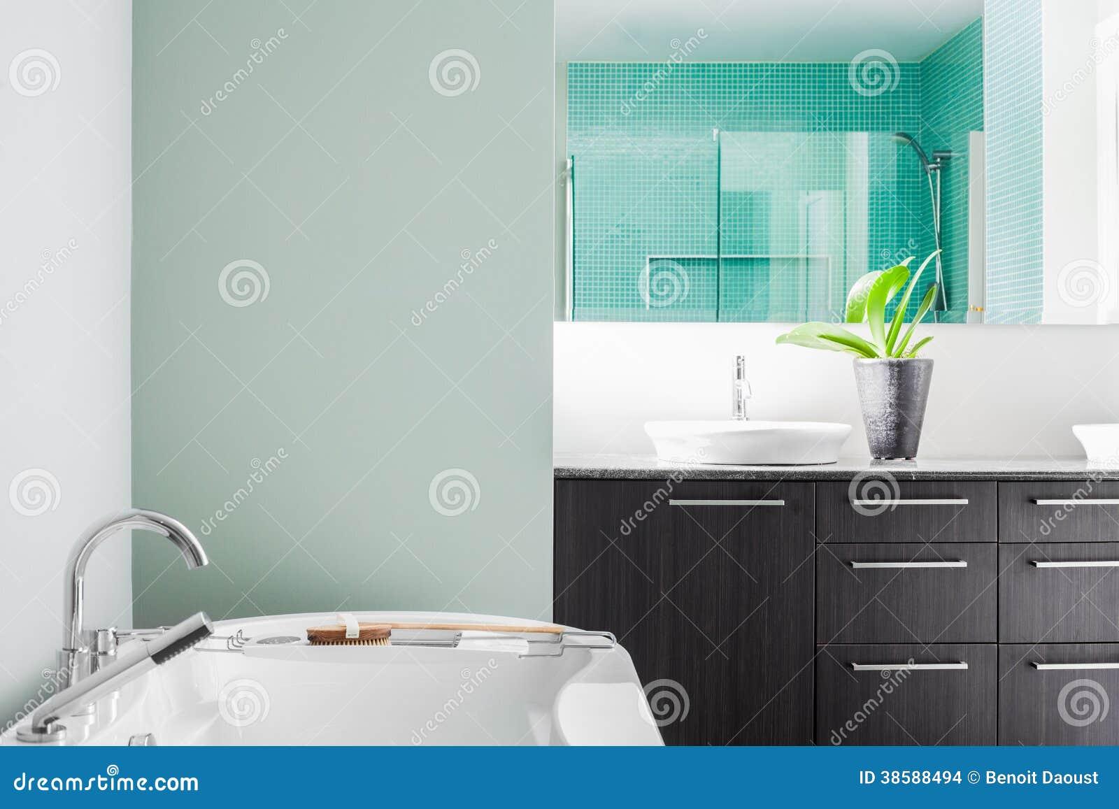 Modernes Badezimmer Unter Verwendung Der Weichen Grunen Pastellfarben Stockfoto Bild Von Weichen Badezimmer 38588494