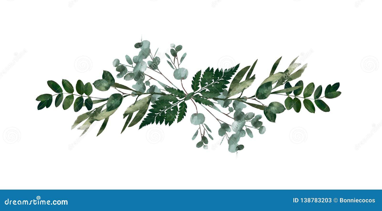 Modernes dekoratives Element des Aquarells Runder grüner Kranz Blatt des Eukalyptus, Grünniederlassungen, Girlande, Grenze, Rahme