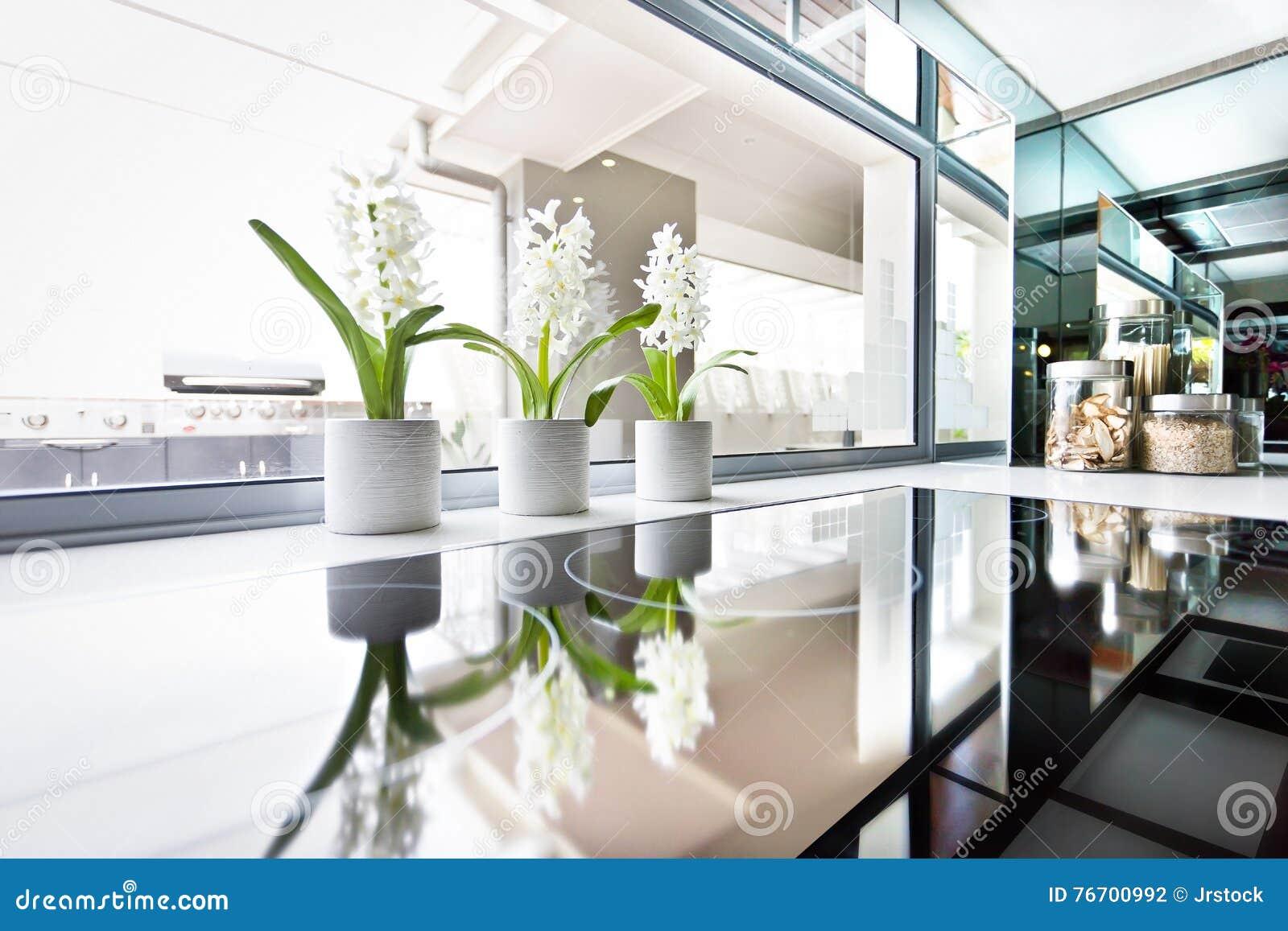 Modernt ugnslut upp bredvid fönstret och blomningväxten