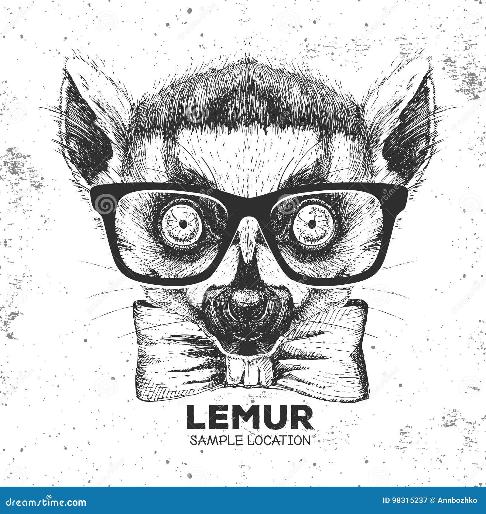 Modnisia zwierzęcia lemur Ręka rysunkowy kaganiec zwierzęcy lemur