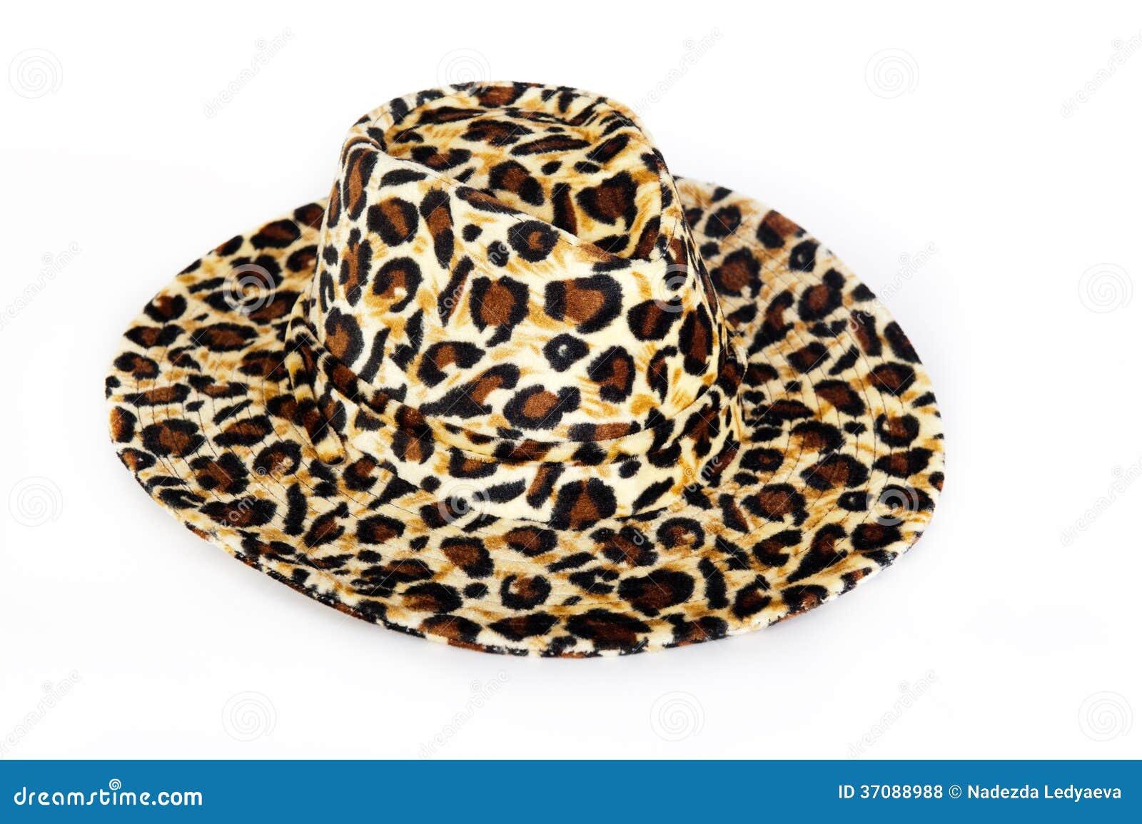 Download Modny kapelusz zdjęcie stock. Obraz złożonej z piękny - 37088988