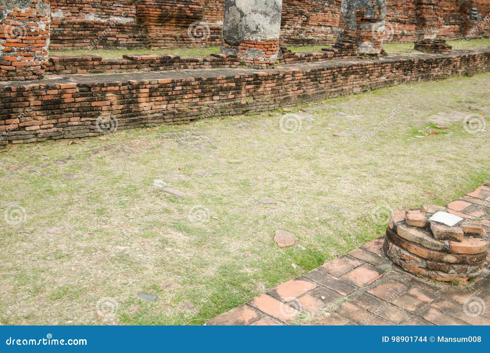Modo del pavimento dell erba in tempio pubblico
