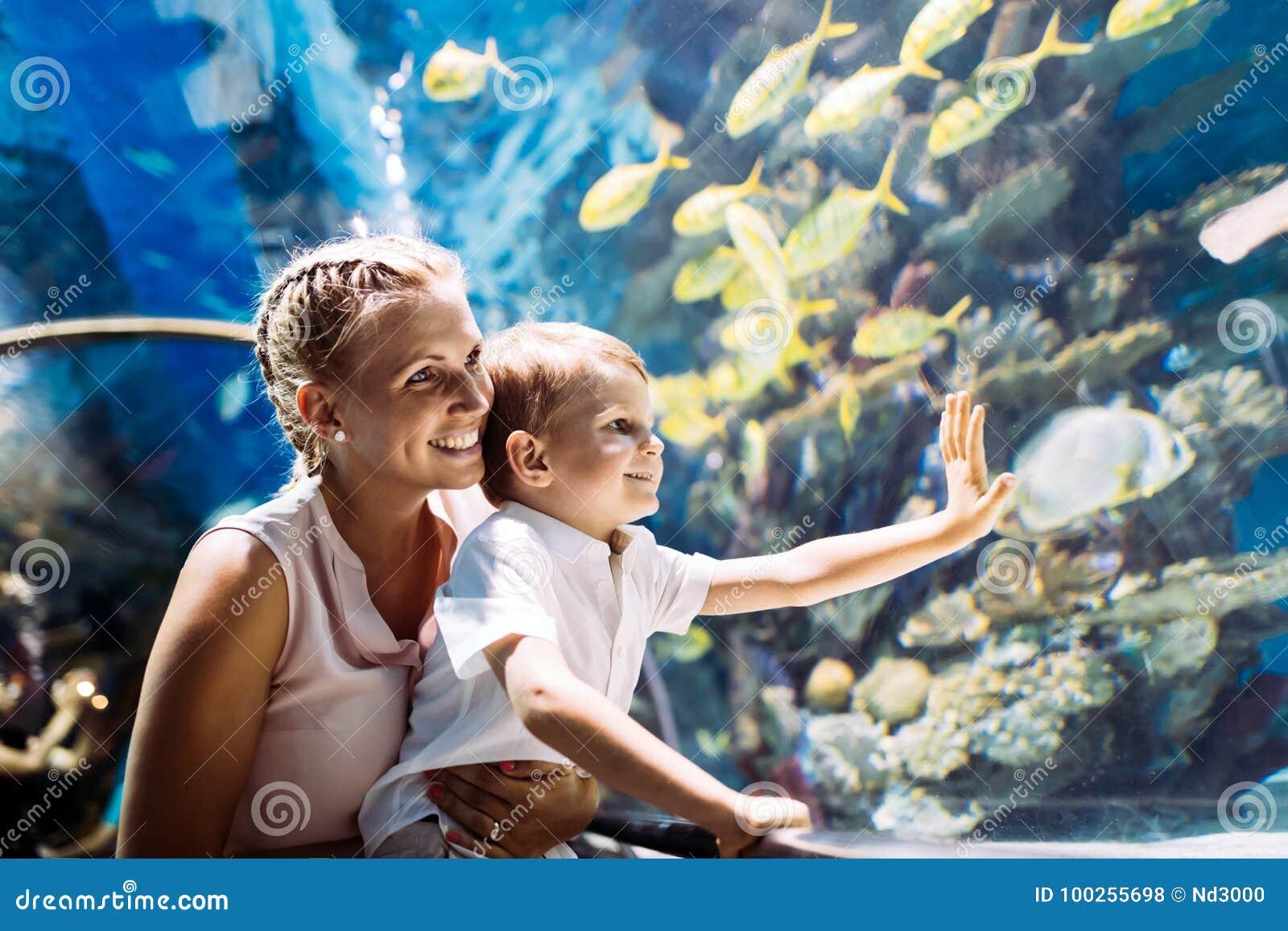 Moeder en zoons het letten op het overzeese leven in oceanarium