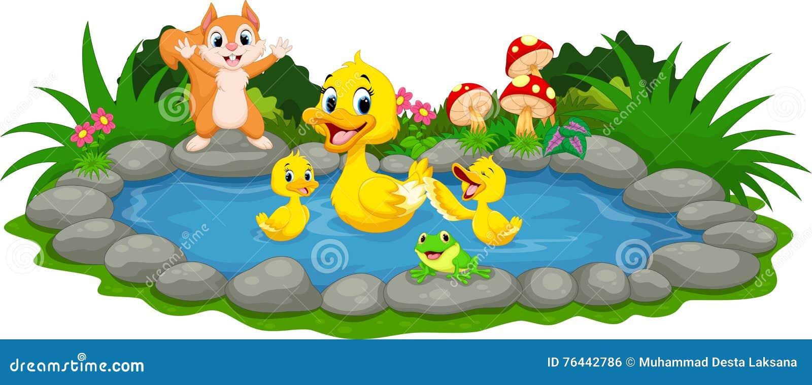Moedereend en kleine eendjes die in de vijver zwemmen