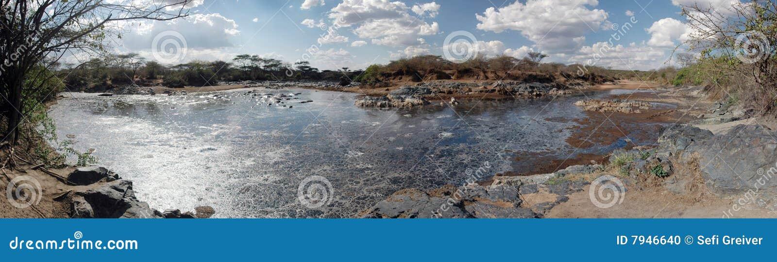 Moeras in Serengeti - Panorama