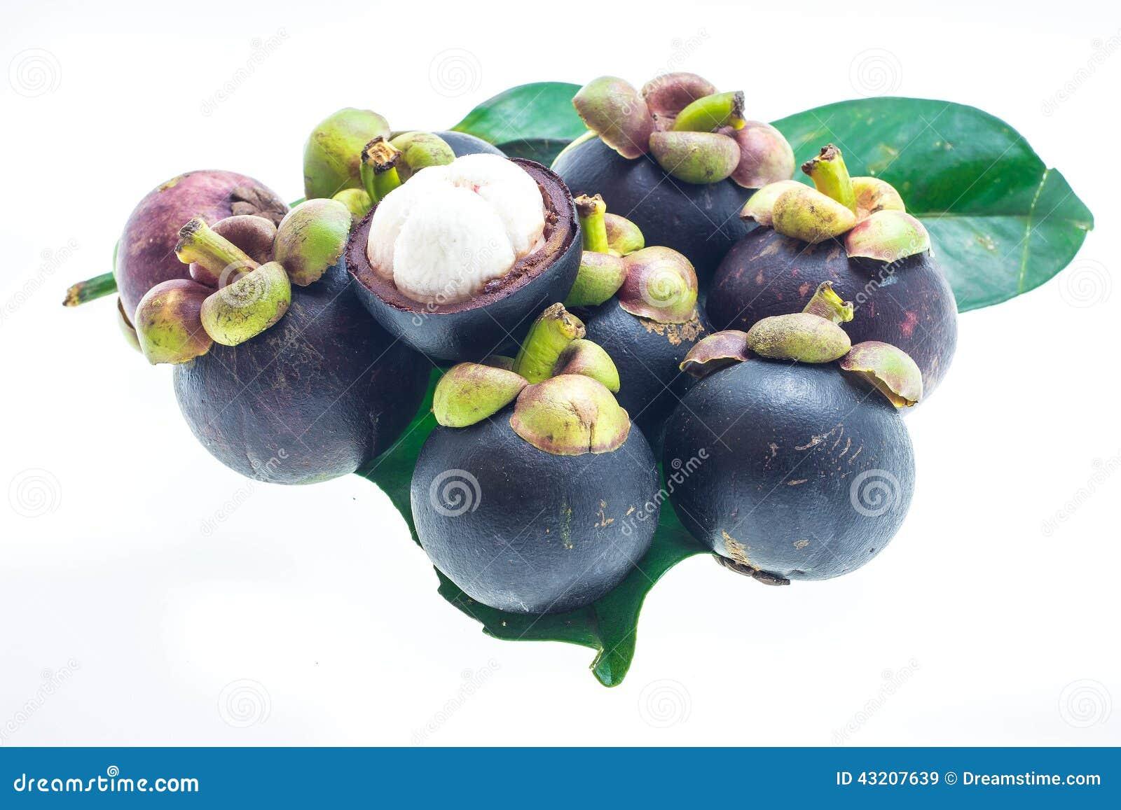 Download Mogen mangosteen fotografering för bildbyråer. Bild av malaysian - 43207639