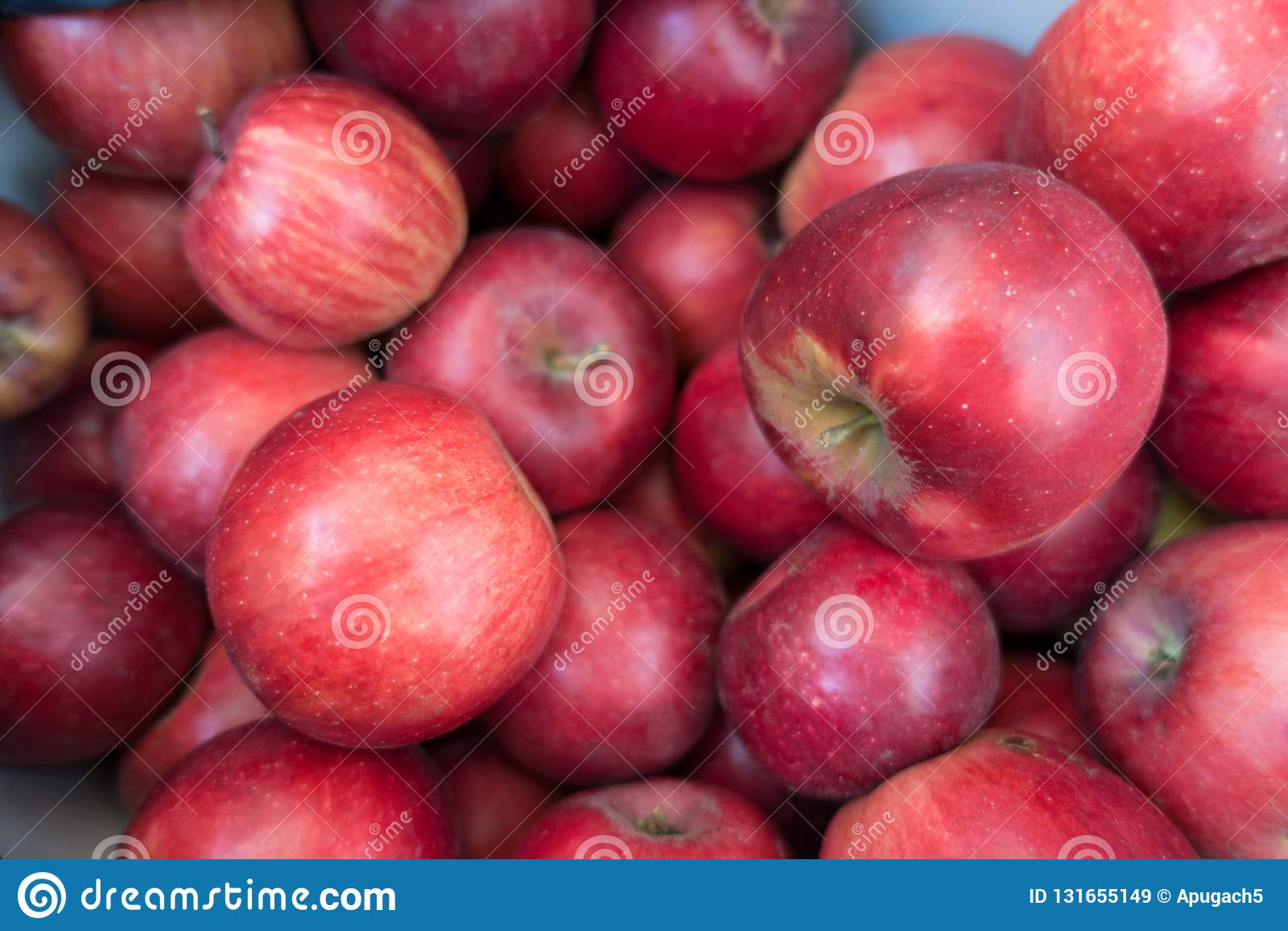 Mogna Jonathan äpplen -, rött, sött, medelstort