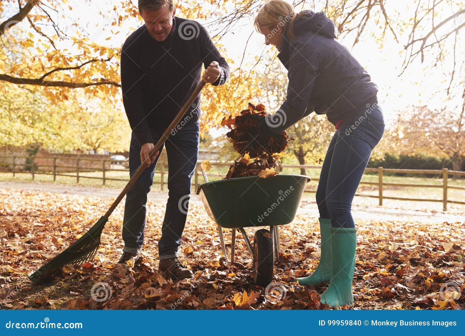 Mogna par som krattar Autumn Leaves i trädgård