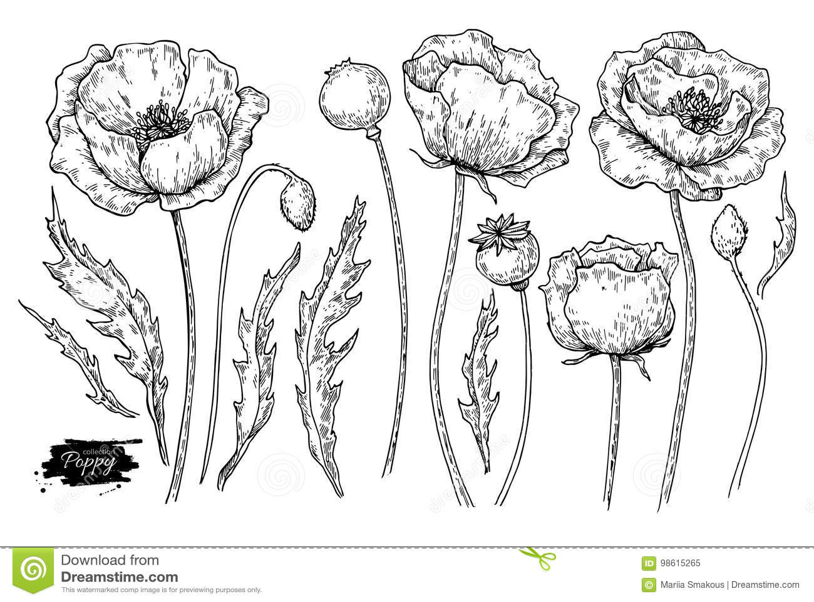 Pflanze Stock Illustrationen, Vektors, & Klipart – (698 Stock ...