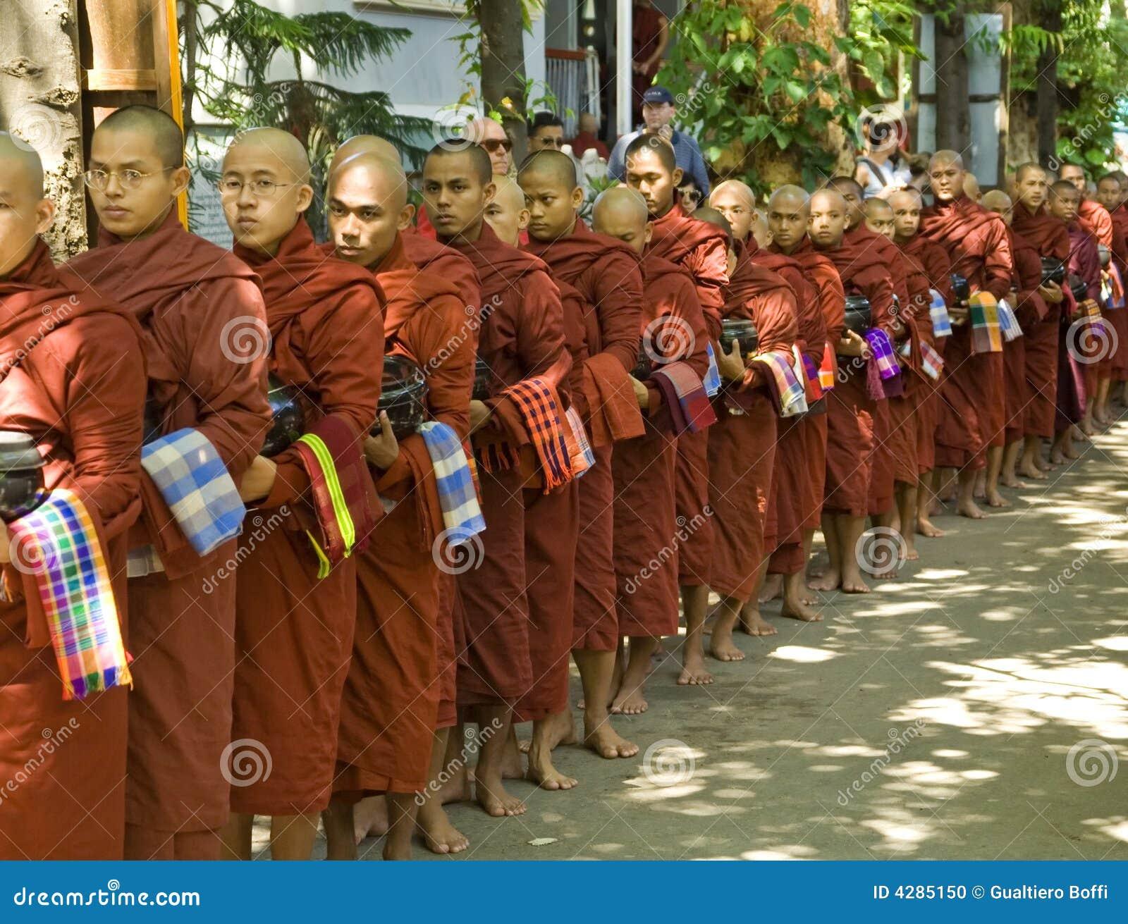 Moine de myanmar