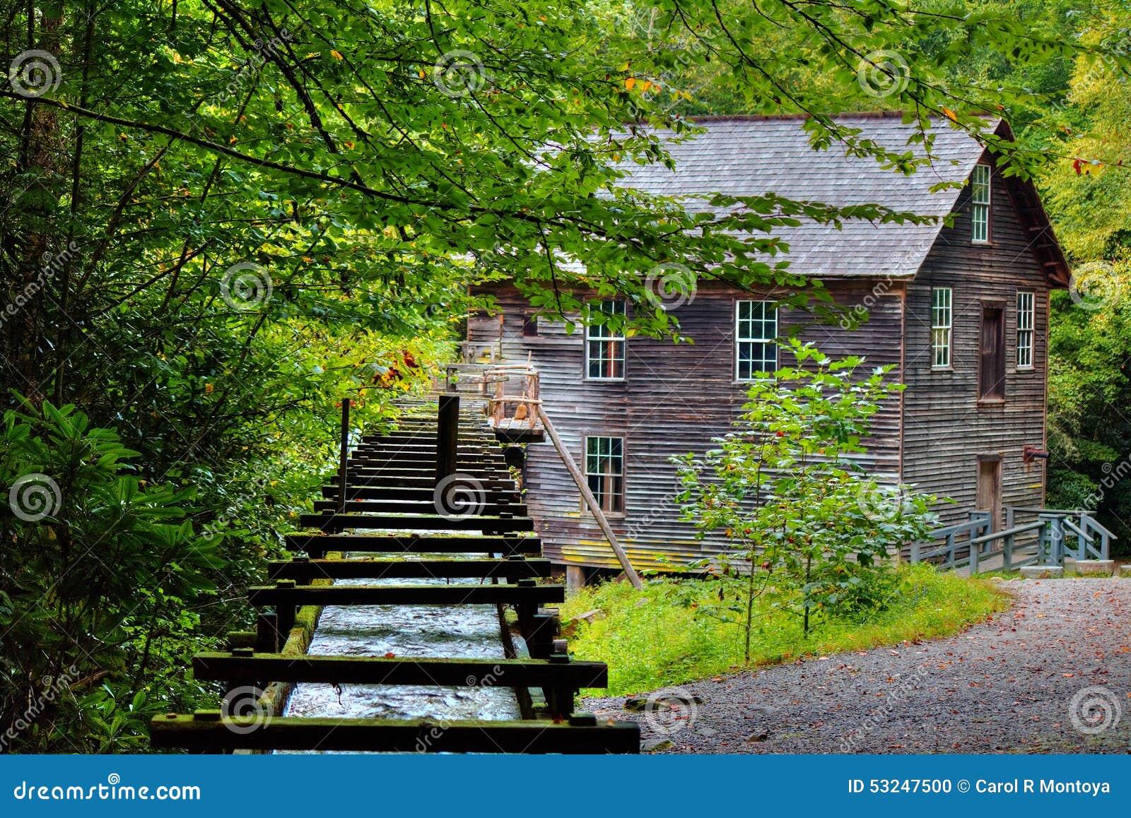 Moinho de Great Smoky Mountains Mingus