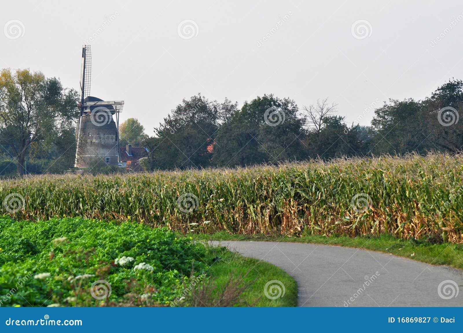 Moinho de vento holandês em cores do outono