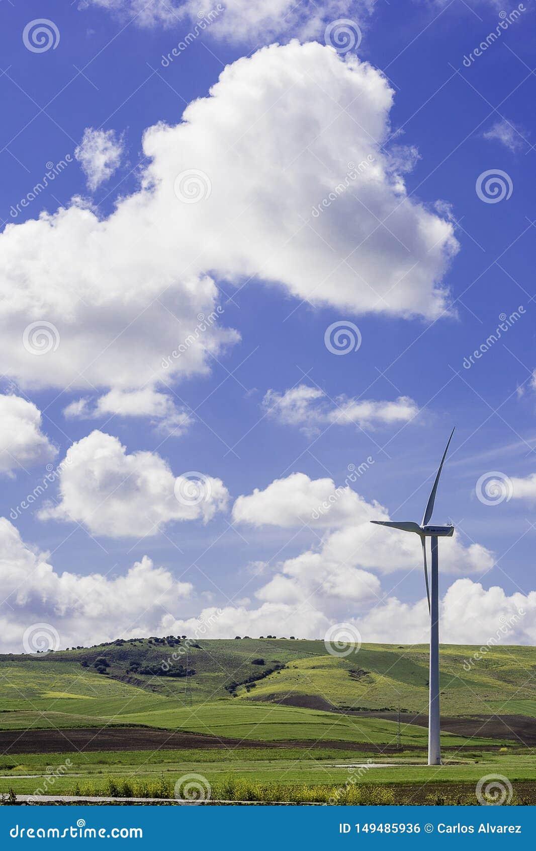 Moinho de vento no prado