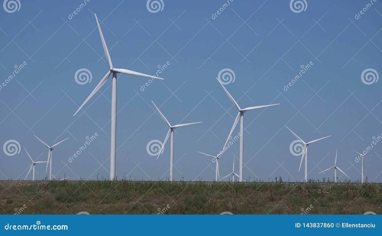Moinhos de vento, turbinas e?licas, poder do gerador do campo de trigo da agricultura, eletricidade