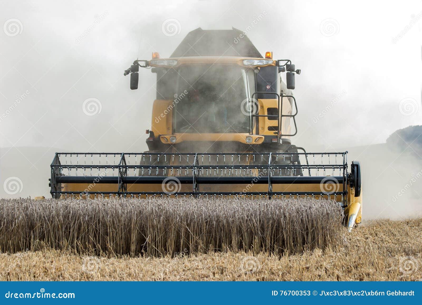 Moissonneuse dans le domaine de maïs