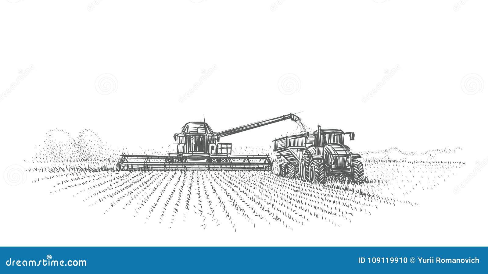 Moissonneuse et tracteur de cartel fonctionnant dans l illustration de champ Vecteur